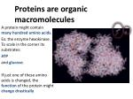 proteins are organic macromolecules