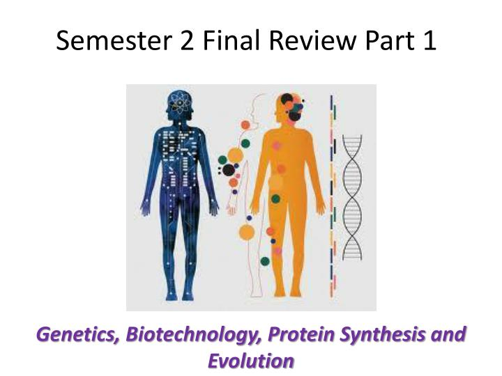 semester 2 final review part 1 n.
