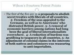 wilson s fourteen potent points1