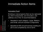 immediate action items6