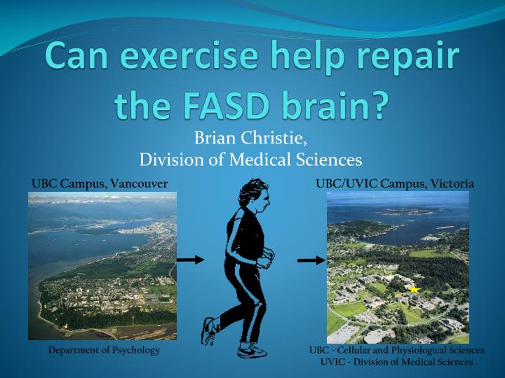 can exercise help repair the fasd brain n.