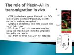 the role of plexin a1 in transmigration in vivo