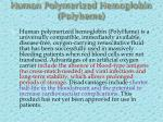human polymerized hemoglobin polyheme
