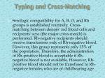 typing and cross matching