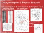 deoxyhemoglobin s polymer structure