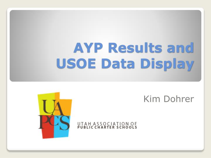 ayp results and usoe data display n.