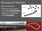 monomers polymers