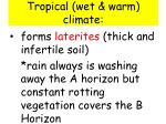 tropical wet warm climate