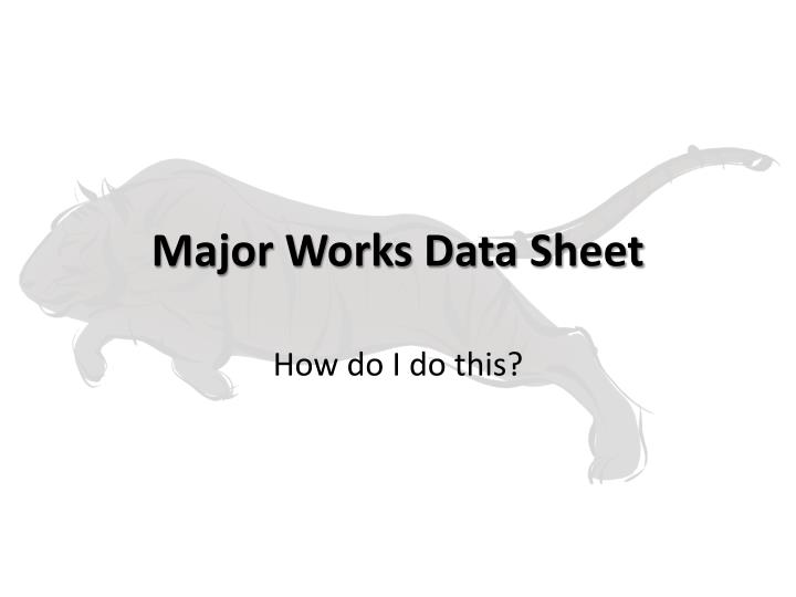major works data sheet n.