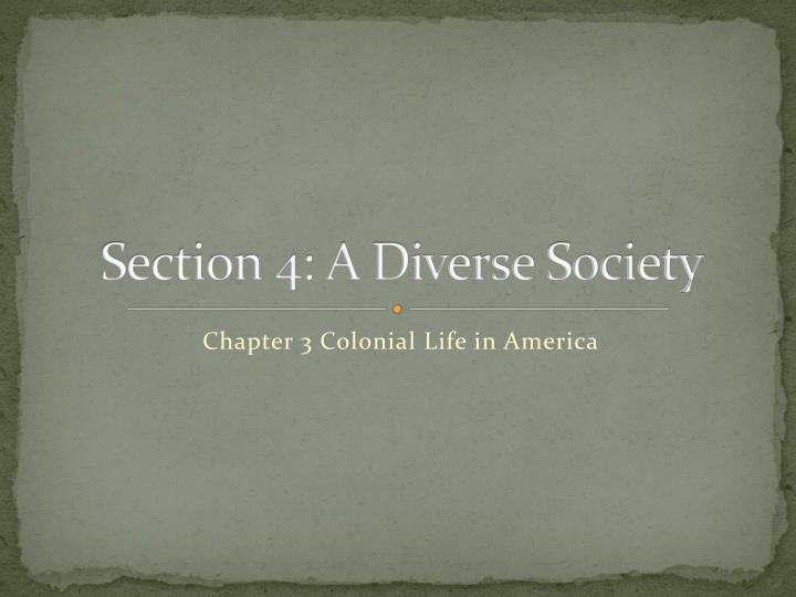 section 4 a diverse society n.