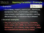 naming variables example