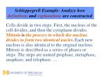 schleppegrell example analyze how definitions and explanations are constructed