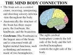 the mind body connection3