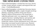 the mind body connection4