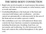 the mind body connection6