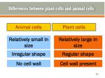 differences between plant cells and animal cells