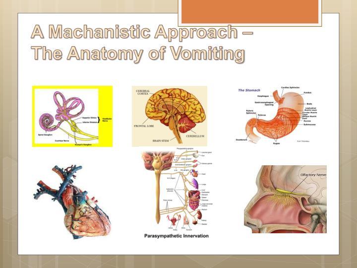 Ppt Nausea Vomiting Powerpoint Presentation Id2229312