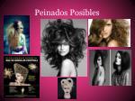 peinados posibles