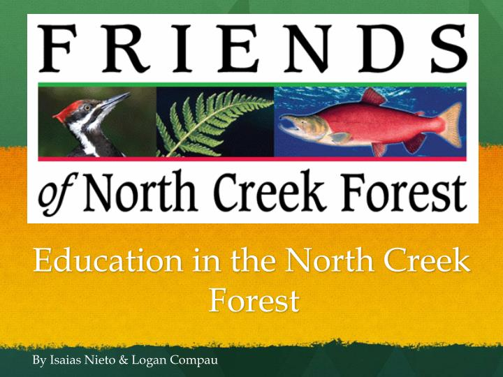 education in the north creek forest n.