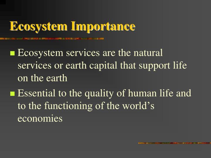 Ecosystem Importance