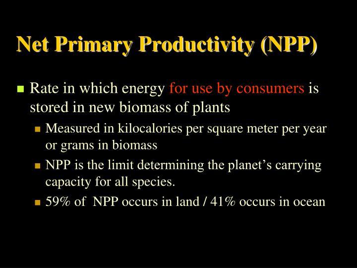 Net Primary Productivity (NPP)