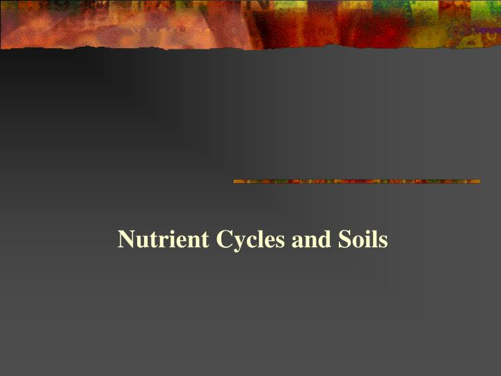 Nutrient Cycles and Soils