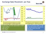 exchange rate movement per pula
