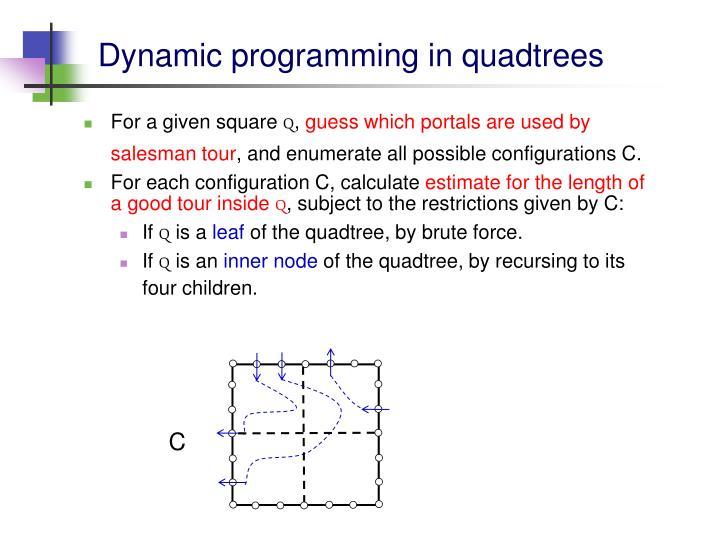 Dynamic programming in