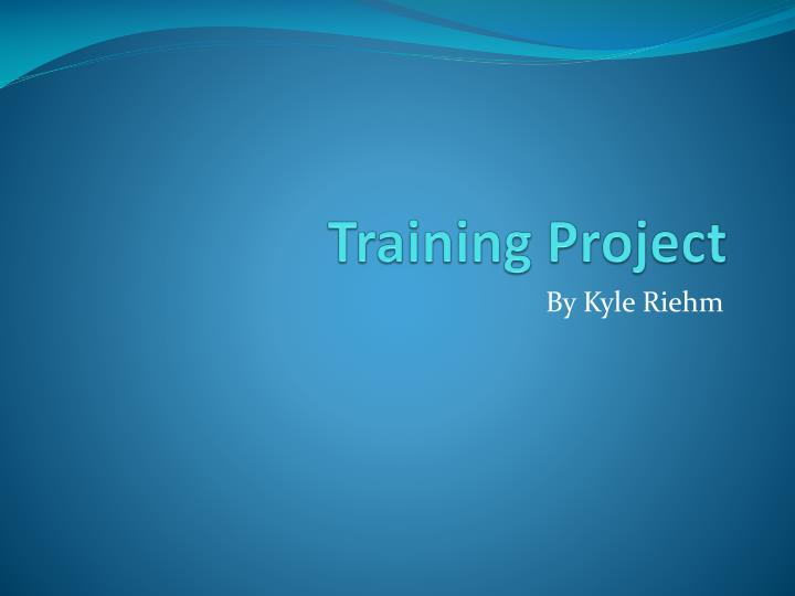 training project n.