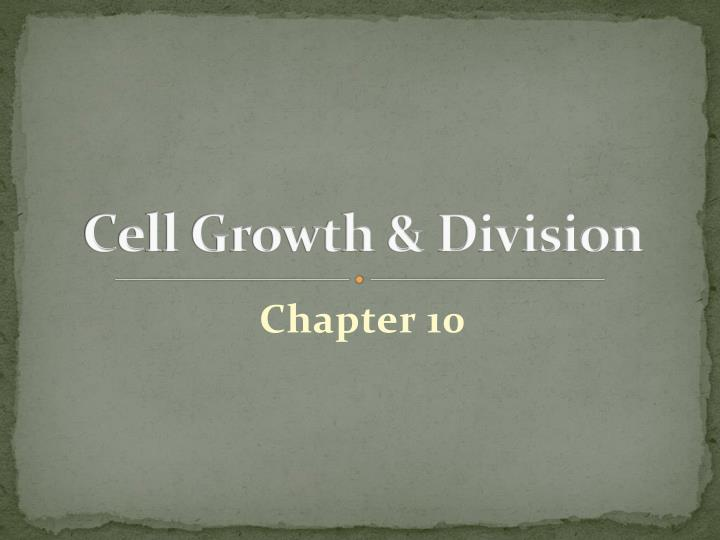 cell growth division n.