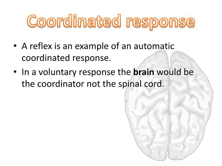 Coordinated response