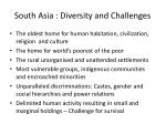 south asia diversity and challenges
