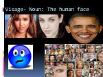 visage noun the human face