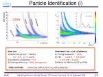 particle identification i