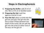 steps in electrophoresis