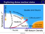 exploring dense nuclear states