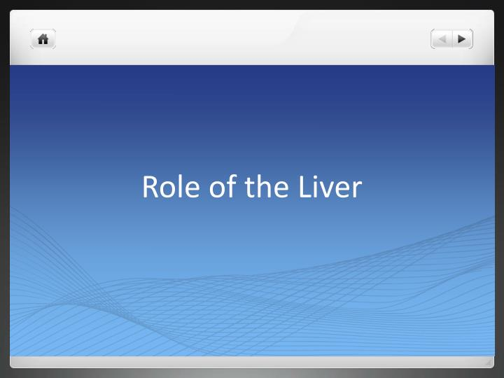 role of the liver n.
