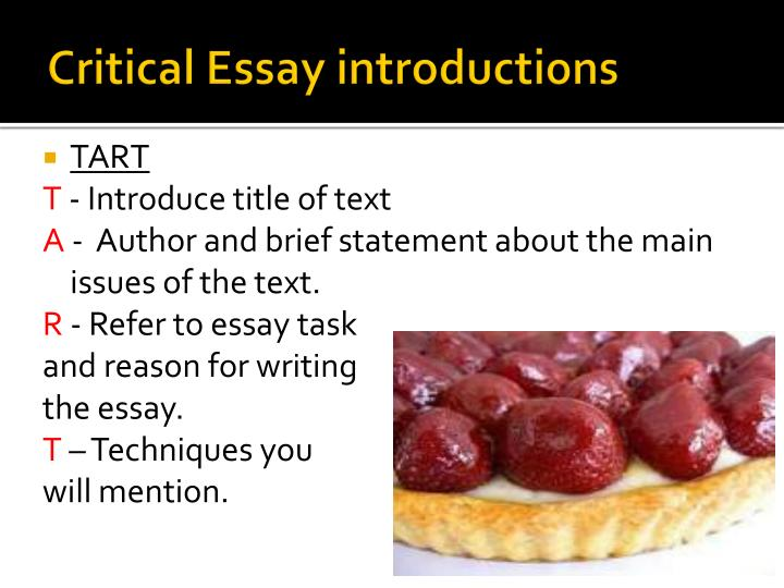 critical essay introductions n.