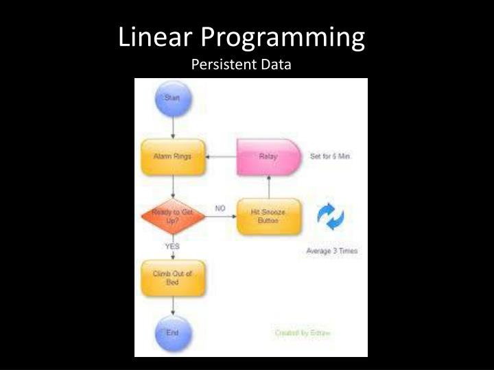 linear programming persistent data n.