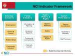 nci indicator framework
