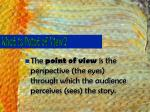what is point of view1