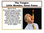 the tongue little member great power