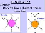 ii what is dna3