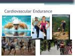 cardiovascular endurance1