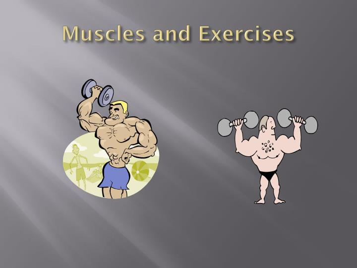 muscles and exercises n.