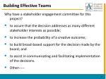 building effective teams1