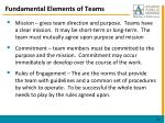 fundamental elements of teams