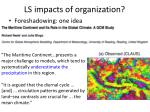 ls impacts of organization
