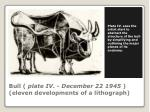 bull plate iv december 22 1945 eleven developments of a lithograph
