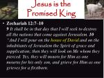 jesus is the promised king11